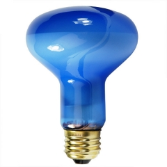 Plant Light - R25/ R80 Incandescent light Bulb