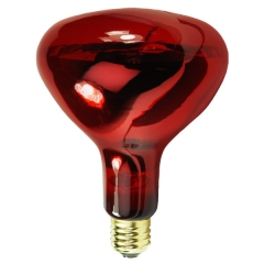 R40   Infrared  Heat  Lamp