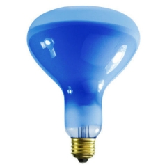 Blue Plant Light Bulb R40 / R125
