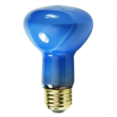 Plant Light - R20  R63 Incandescent light Bulb