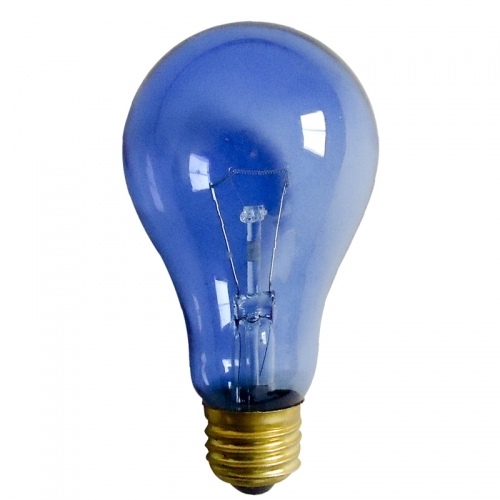 Sales Daylight Blue Light Bulb Daylight Blue Reptile Bulb Manufacturer