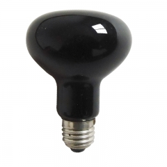 Black Light Bulb R80 R25