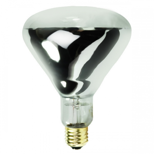 BR40  Infrared Bulb 250W
